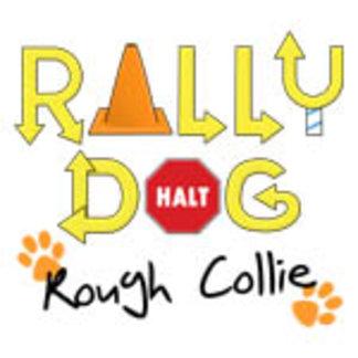 Rough Collie Rally Dog