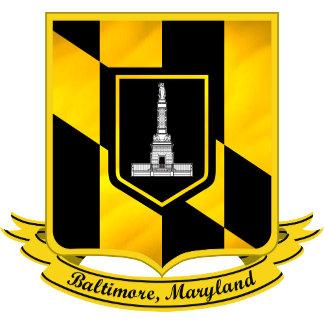 City Flag 3