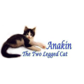 Anakin Logo Products