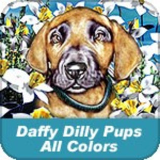 Daffy Dilly Dane Pups