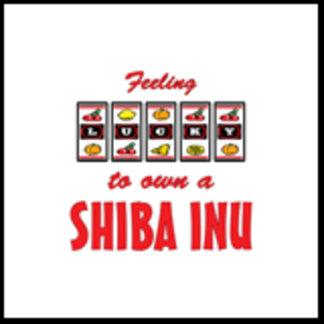 Feeling Lucky to Own a Shiba Inu