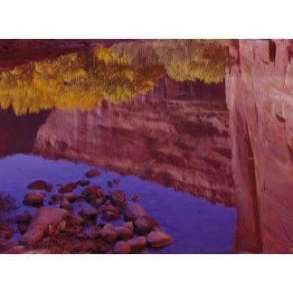 North America, U.S.A., Arizona, Canyon de Chelly