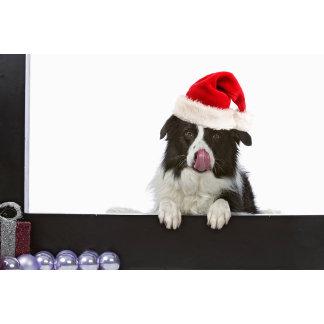 Christmas, season greetings
