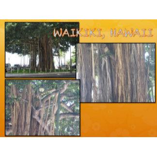 HAWAII COLLAGE #4
