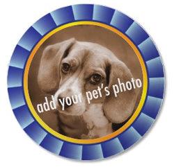 Blue Ribbon Pet Picture