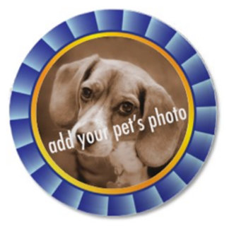 Blue Ribbon Pet Picture