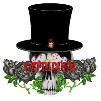 Capricorn Skull