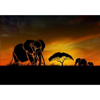 African Safari Black Elephant and gold sunset