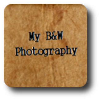 My B&W Photography