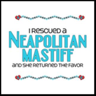 I Rescued a Neapolitan Mastiff (Female Dog)