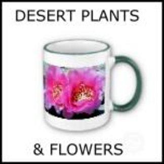 Desert Plants & Flowers