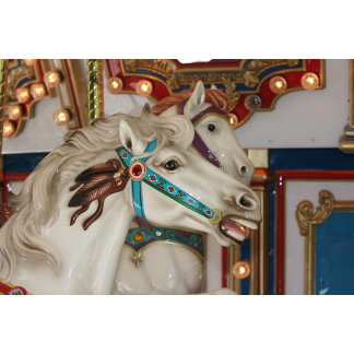 White carousel horse with blue bridle photograph