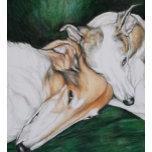 'SighthoundComfort'Charlott.jpg