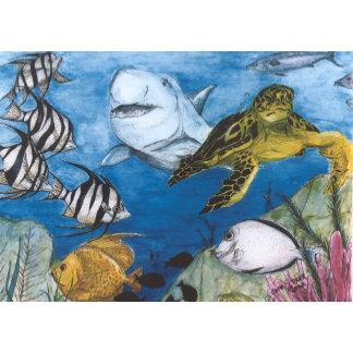 Fish - Birds - Sealife
