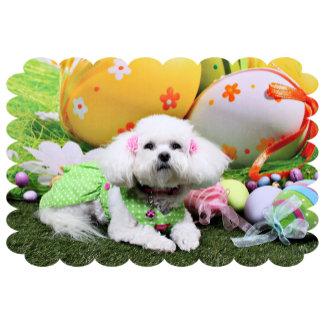 Bichon Frise - Easter Portrait - Mia