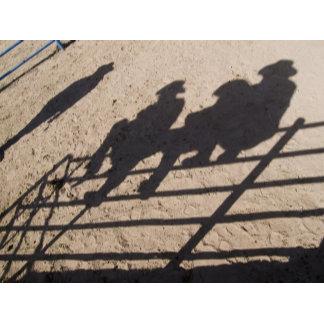 Tucson, Arizona: Shadows of Rodeo competitors