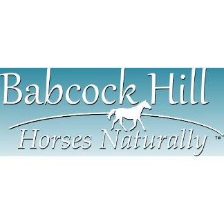 Babcock Hill Horses Naturally