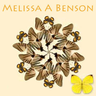 Melissa A Benson