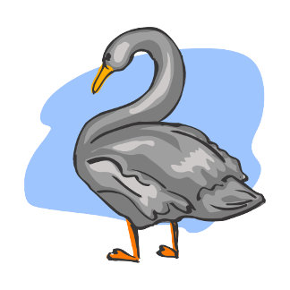 Swarren Swan