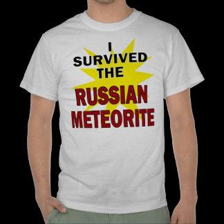 Meteorite Survivor