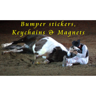 Bumper stickers, Keychains and Magnets