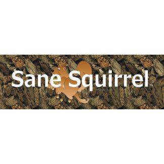 Sane Squirrel