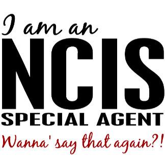 I Am An NCIS Agent