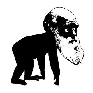 Funny Darwin evolution Tees,Darwin evolution gifts