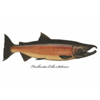 Salmon & Steelhead Fish T-shirts & Gifts