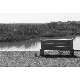 Bench by river black and white