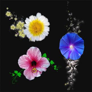 Flowers/Tree's & Scenaries