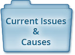 Current Issues & Causes