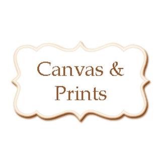 • Canvas & Prints