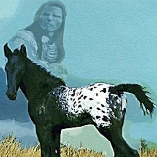 Nez Perce Pony