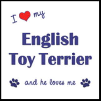 I Love My English Toy Terrier (Male Dog)