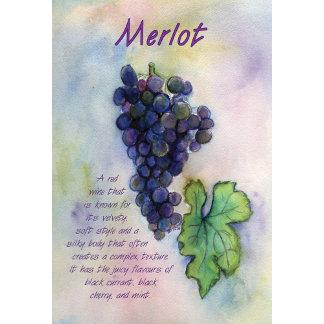 Merlot Wine Grapes