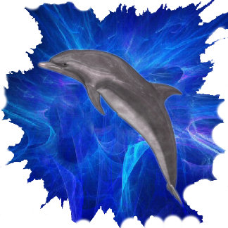 Dolphin leaping 101 items,