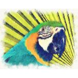 apr12_ff_parrot.png