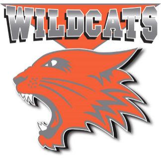 High School Musical Wildcats Logo