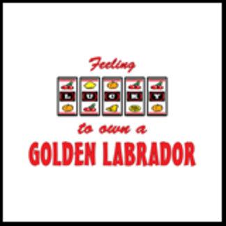Feeling Lucky to Own a Golden Labrador