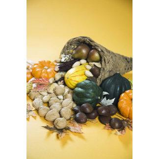 Display of autumn gourds in basket