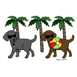 Cool Labradors Duo