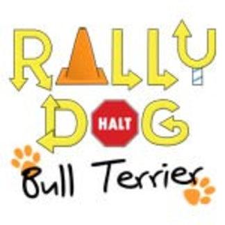 Bull Terrier Rally Dog