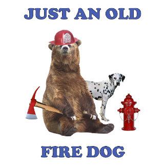 Old Fire Dog Bear