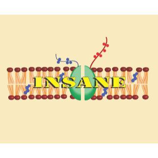 Insane in the Membrane