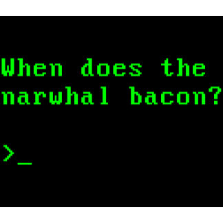 When Does the Narwhal Bacon?