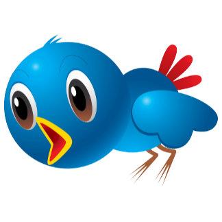 Bird Blue Bluebird