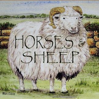 Horses, Sheep, Animals