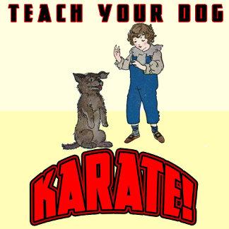 Dog Karate 1