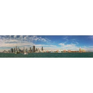 City -  Chicago Skyline & The Navy Pier